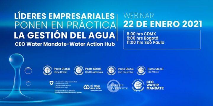 Webinar: Líderes empresariales que promueven la gestión del agua