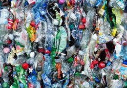 Día Mundial del Reciclaje: Cómo generar menos residuos en casa