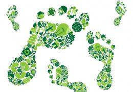 Tecnología MIMASOFT contribuye a reducir sobre 40% la huella de carbono en empresas